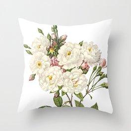 Botanical Print, White Roses, Rosa Noisettiana Throw Pillow