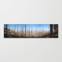 Mount Lemon After Fire Canvas Print