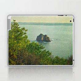 Breizh Laptop & iPad Skin