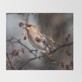 Cedar Waxwing Berry Flip Throw Blanket