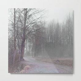 Walk in the Foggy Morning Metal Print