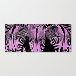 Three pink Grevy's Zebra (Equus grevyi) Butts in a row. Canvas Print