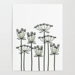 wild carrots Poster