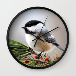 Pine Chickadee Wall Clock