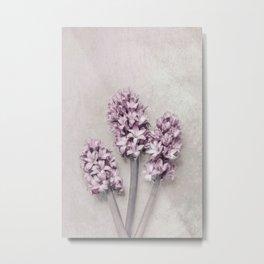 Beautiful Pink Hyacinths Metal Print
