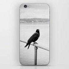 Eerie Bird iPhone & iPod Skin