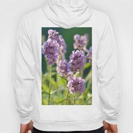 Lavender 0129 Hoody
