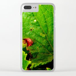 Last Cukes of Summer Clear iPhone Case