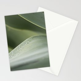 Agave study Stationery Cards