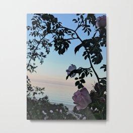 Nordic nature - The beach rose Metal Print