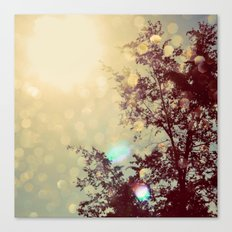 golden sky Canvas Print