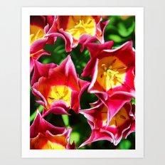 Spring Greatings Art Print