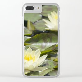 Longwood Gardens - Spring Series 303 Clear iPhone Case