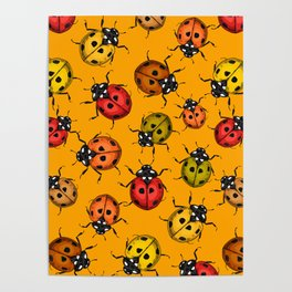 Colorful ladybugs Poster