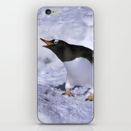 Chatting Penguins iPhone Skin