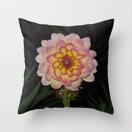 blooming pink flower Throw Pillow
