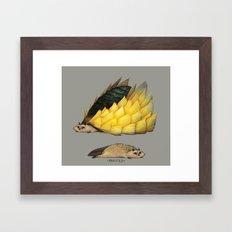 Golden Platypowl Framed Art Print