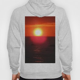 Flying into the Sun Hoody