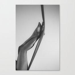 Leggy Canvas Print