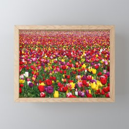 Wicked Tulips Farm, Rhode Island Framed Mini Art Print