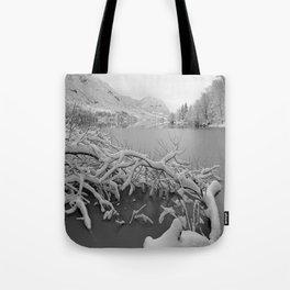 Wintry Lake Bohinj Tote Bag