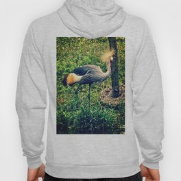 Gray Crowned Crane in High Grasses Hoody