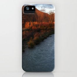 Gama de marrones iPhone Case