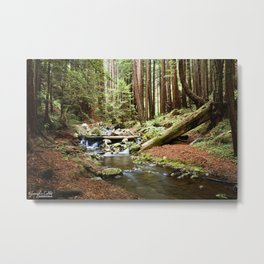 Crystal Stream Metal Print