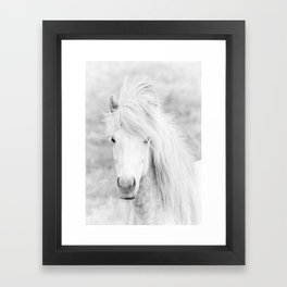 Wild Free White Horse, Animal Wall Art, Horse Wall Art, Horse Photography Framed Art Print