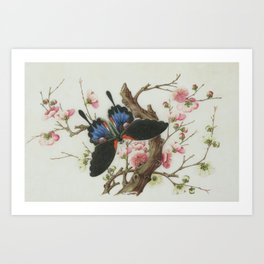 Butterfly with tree pink flowers Art Print