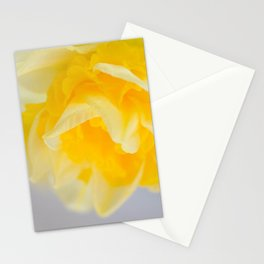 Spring Dream Stationery Cards