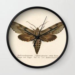 Antique Moth Lithograph Wall Clock