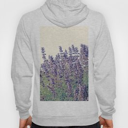 Lavender And Stone Hoody