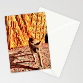 Sahara Cat, Morocco Stationery Cards