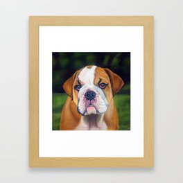 Puppy Bulldog Pastel Pencil Drawing Framed Art Print