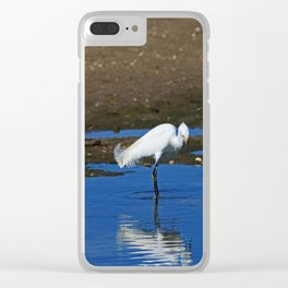 Snowy Egret at Ding Clear iPhone Case