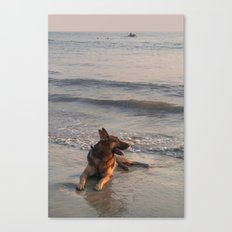 German Shepherd in the Surf Palolem Canvas Print