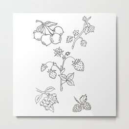Fruit Variety Study Design — Mixed Fruits Illustration — Strawberry and other Fruits Design Metal Print