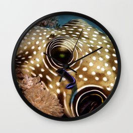 Puffer Fish Being Cleanced Wall Clock