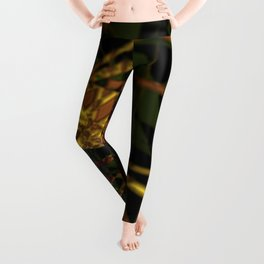 Fractal structure urban aerial view background Leggings