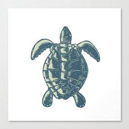Sea Turtle Top View Scratchboard Canvas Print