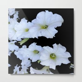 White Garden Petunia Flowers On Black Art Metal Print