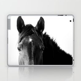 Horse in Black and White Laptop & iPad Skin