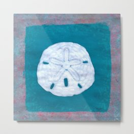 Sand Dollar Painting by Catherine Coyle Metal Print