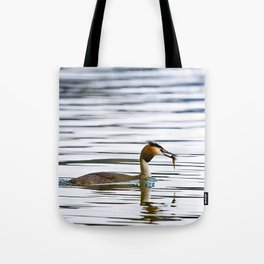 Great crested grebe and its catch Tote Bag