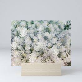 Exceptional succulents Mini Art Print