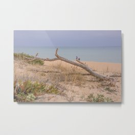 Old branch beach Metal Print