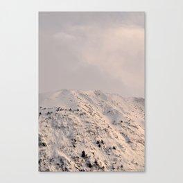 Turnagain Arm Mountain Canvas Print