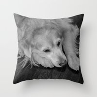golden retriever Throw Pillows featuring Golden retriever by Mauricio Togawa