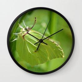 Zest de Citron Wall Clock